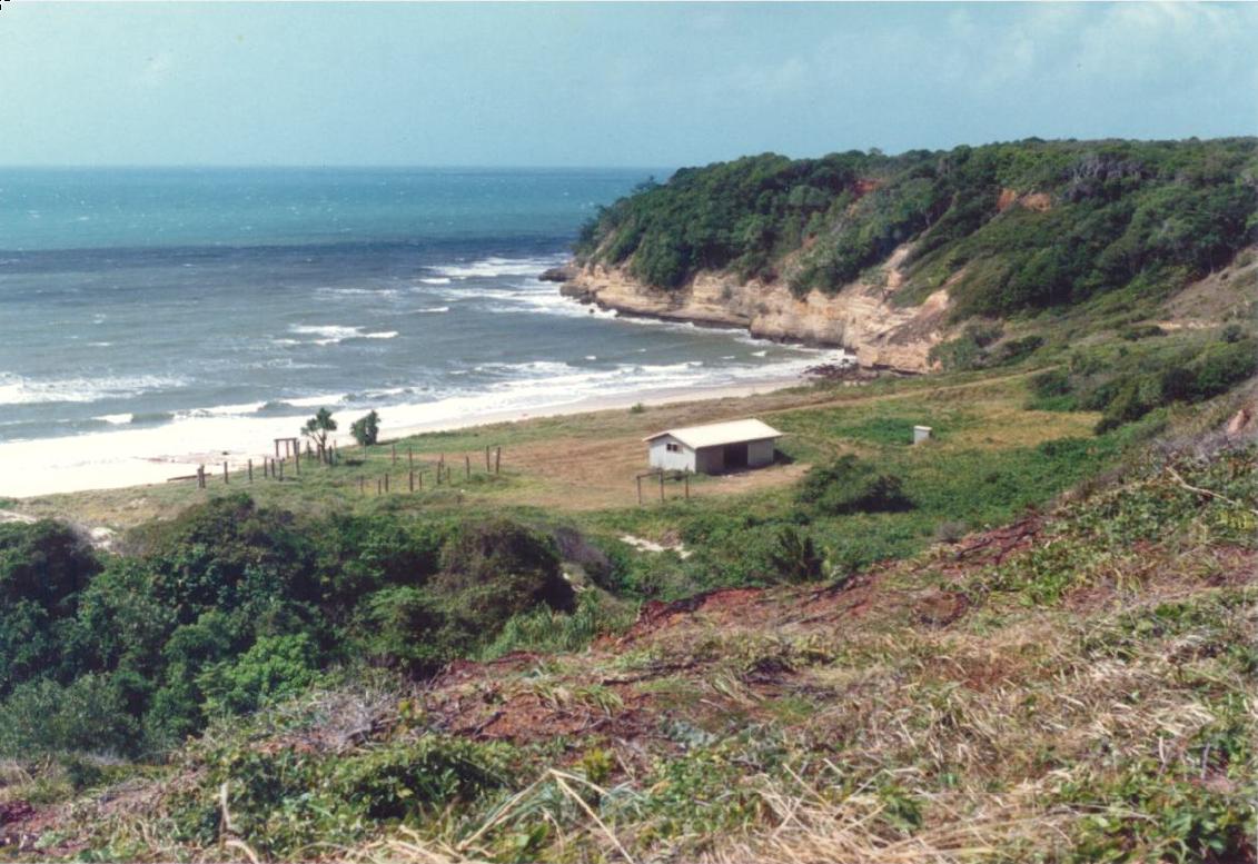 Captain Billy's Landing Cape York.png