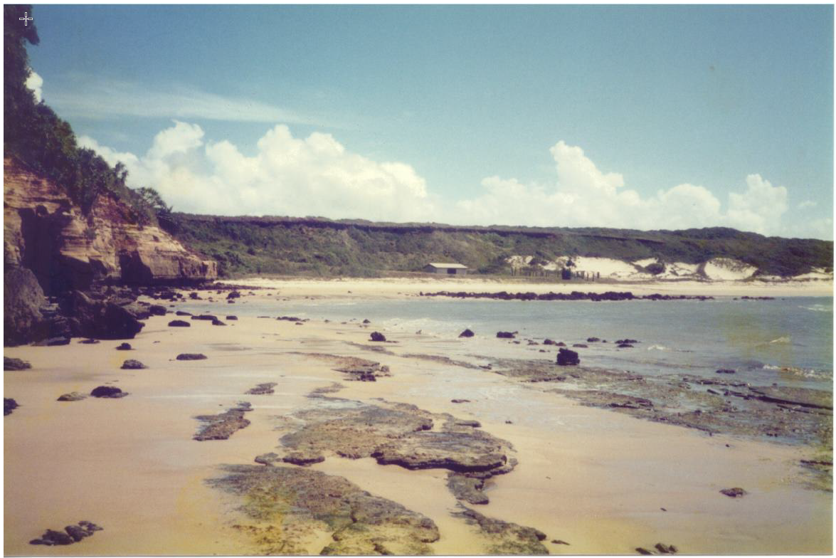 Looking North toward Captain Billy's Low Tide.png