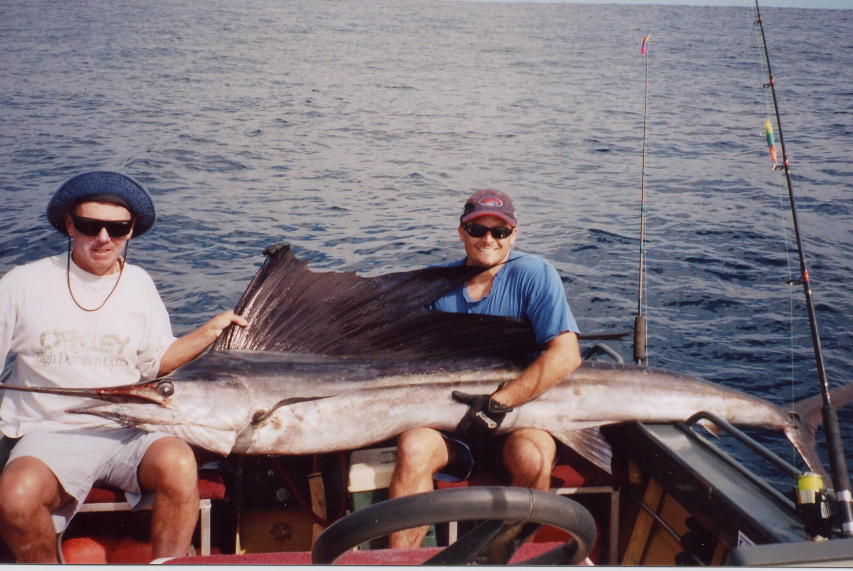 sailfish 2.jpg